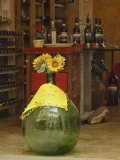 Sunflowers in front of small wine shop  Tuscany  Pienza  Italy