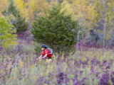 Mountain biking on the Murphy Hanrehan Trails near Minneapolis  Minnesota  USA
