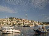 Fishing boats in harbor  Hvar Town  Hvar Island  Dalmatia  Croatia