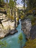 Athabasca Falls  Jasper National Park  Alberta  Canada