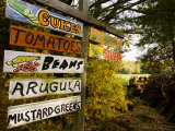 A farm stand in Holderness  New Hampshire  USA