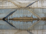 Steps mirrored on small lake  Jodhpur  India