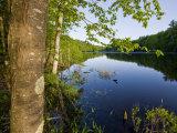 Boulter Pond at Highland Farm  York  Maine