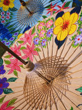 Decorative Umbrellas Drying  Bo Sang  Chiang Mai  Thailand