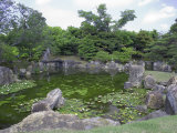 Japanese Garden of Nijo Castle  Kyoto  Japan