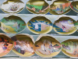 Painted Shells  Kyoto  Japan