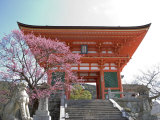 Soaring Gate of Temple  Kyoto  Japan