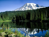 Mt Rainier Reflected in Reflection Lake  Washington  USA