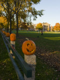 Late afternoon on the Dartmouth College Green  Hanover  New Hampshire  USA