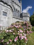 Medieval Castle  County Kilkenny  Ireland