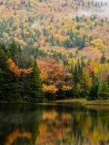 Ammonoosuc Lake in fall  White Mountain National Forest  New Hampshire  USA