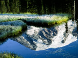 Mt Rainier Reflected in Reflection Lake  Washington  USA