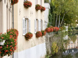 Flowerbox  Luxembourg City  Luxembourg