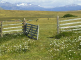 Ranch On Meadow  Torres Del Paine  Patagonia  Chile