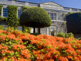Formal Garden With Azaleas  County Down  Ireland