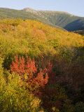 Mount Lafayette in fall  White Mountain National Forest  New Hampshire  USA