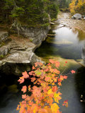 Upper Falls on the Ammonoosuc River  White Mountains  New Hampshire  USA