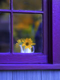 Window with Sunflowers in Vase