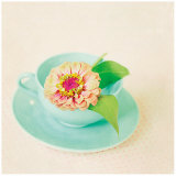 Zinnia and Tea Cup