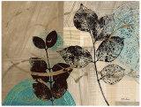 Leaf Kaleidoscope II