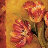 Pandora's Bouquet II