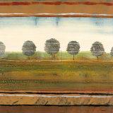 Tree Scape II