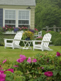 Backyard Along Marginal Way  Ogunquit  Maine  USA
