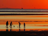 People with Nets at Low Tide in the Brewster Tidal Flats at Sunset
