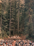 San Francisco Opera Ballet Performing in a Grove of Giant Redwoods