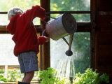 Boy Watering Plants in a Green House