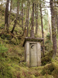 Outhouse in a Moss Covered Forest