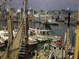 Commercial Fishing Boats of All Sizes Crowd the Town's Busy Harbor
