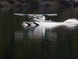 Seaplane Lands in Rudyard Bay