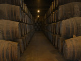 Casks of Wine in a Wine Cellar