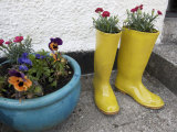 Ceramic Yellow Boots Function as Planter  Inner Hebrides