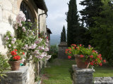 Tuscan House with Roses and Pelagonier in the Gardens