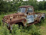 Abandoned Truck Rests in a Patch of Overgrown Grasses and Bushes