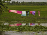 Hanging Laundry Near a River in Kerala