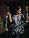Woman Holds Mounted Quetzals  National Bird of Guatemala