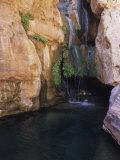 Elves Chasm Grand Canyon National Park  Arizona