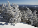 Summit View from the Top of Madonna Mountain  Vermont  with Rime Covered Trees