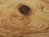 Wood Grain and Knotholes in Red Cedar