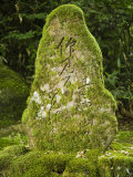 Moss Covered Stone with Writing at Natadera Temple