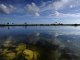 Cloud Reflections in Still Water in Everglades National Park