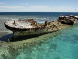 Reef Wreck of the Protector  Australia's First Naval Vessel