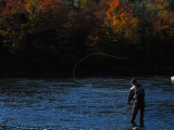 Fisherman Fly Fishing for Atlantic Salmon  Salmo Salar