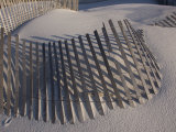 Sand Fence on the Beach in Destin  Florida