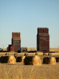 Derelict Grain Elevators Stand in the Prairies