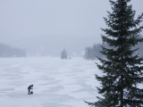 Woman Shovels a Rink on a Lake