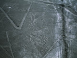 Mysterious Nazca Lines Form a Spider in the Desert